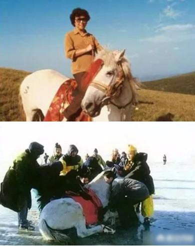Đời phong ba của chú ngựa phim Tây du ký - Ảnh 3.