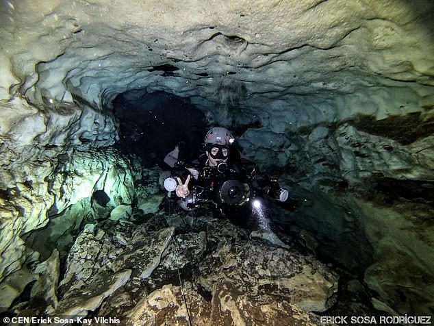 Dấu vết cá mập quái thú 2,5 triệu tuổi xuất hiện… giữa thành phố - Ảnh 4.