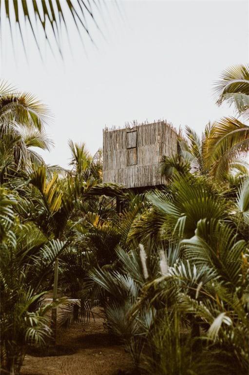 Những ngôi nhà trên cây tuyệt đẹp ai cũng muốn sống thử - Ảnh 9.