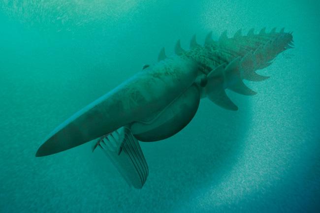 Điếng hồn trước con tôm khủng dài 1,8 m  - Ảnh 1.