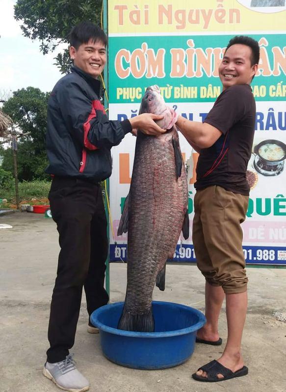"""Con cá trắm đen """"khủng"""" nặng 33 kg dài 1 m mắc lưới ở Thanh Hóa - Ảnh 1."""