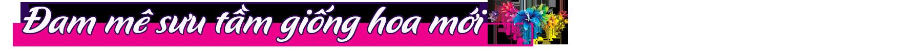 """[Emagazine] """"Phù thủy"""" của các loài hoa màu tím - Ảnh 3."""