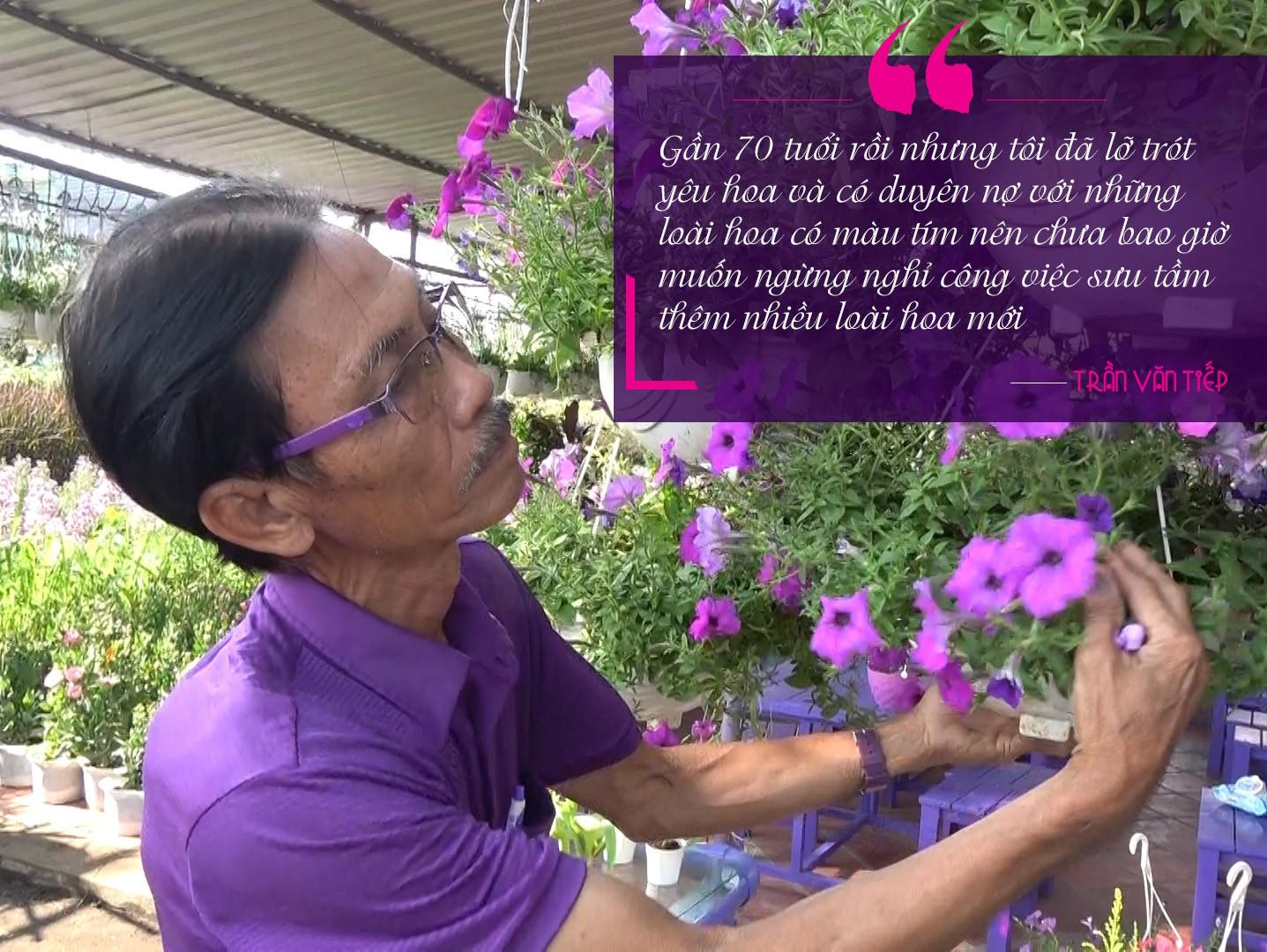 """[Emagazine] """"Phù thủy"""" của các loài hoa màu tím - Ảnh 5."""