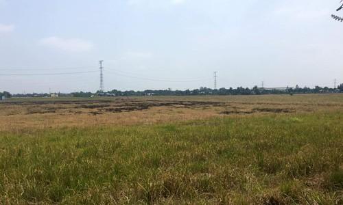Đất nền ngoại thành Sài Gòn có thể tăng giá 30% - Ảnh 1.
