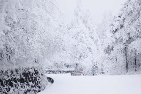 Núi Nga Mi ngập tuyết trắng - điểm du lịch hút khách ở Trung Quốc - Ảnh 1.