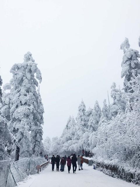 Núi Nga Mi ngập tuyết trắng - điểm du lịch hút khách ở Trung Quốc - Ảnh 5.