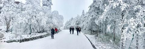 Núi Nga Mi ngập tuyết trắng - điểm du lịch hút khách ở Trung Quốc - Ảnh 9.