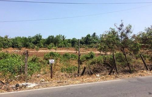 Đất lô lớn ở Cần Giờ được hét giá trăm tỉ - Ảnh 1.