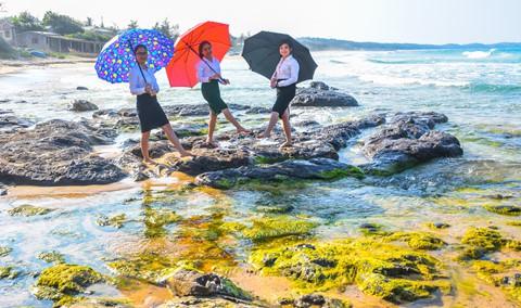 Bãi rêu cổ tích hút du khách khám phá trầm tích núi lửa Quảng Ngãi - Ảnh 3.