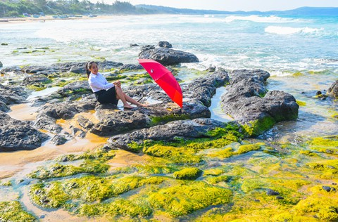Bãi rêu cổ tích hút du khách khám phá trầm tích núi lửa Quảng Ngãi - Ảnh 4.