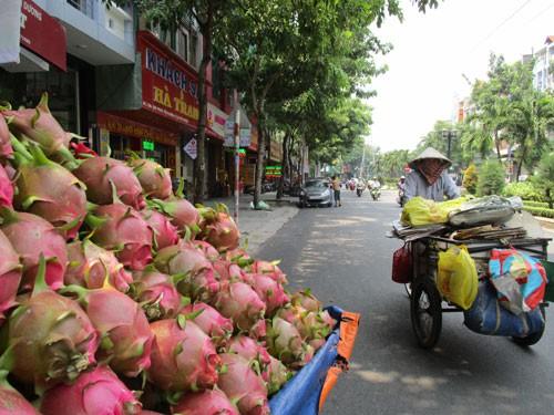 Trung Quốc siết đường tiểu ngạch, lo rau quả bí đầu ra - Ảnh 1.