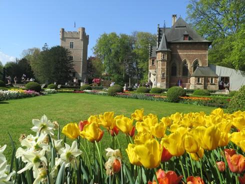 Chiêm ngưỡng vẻ đẹp hoa mùa xuân ở Bỉ - Ảnh 21.