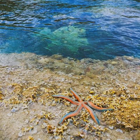 Đến Quy Nhơn, nạp vitamin sea cho ngày hè nóng nực - Ảnh 13.