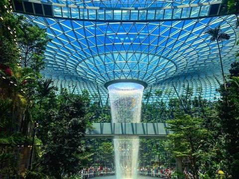 Du khách hào hứng check-in bên thác nước ở sân bay Changi - Ảnh 1.