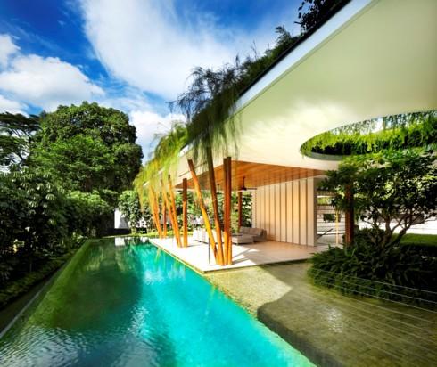 Ngôi nhà xanh mướt với vườn trên mái - Ảnh 5.