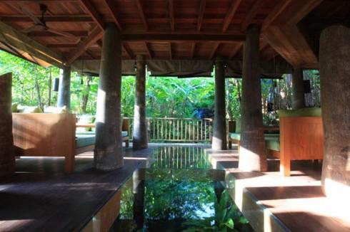 Bên trong khu nghỉ mát tuyệt đẹp giữa rừng nhiệt đới - Ảnh 14.