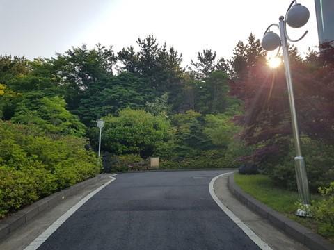 Du lịch Hàn Quốc như thế nào để có trải nghiệm chất nhất? - Ảnh 1.