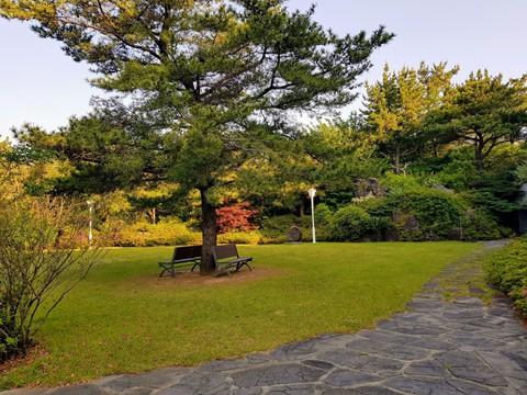 Du lịch Hàn Quốc như thế nào để có trải nghiệm chất nhất? - Ảnh 5.