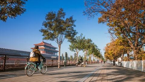 Hội An và những cung đường đạp xe lý tưởng nhất thế giới - Ảnh 2.