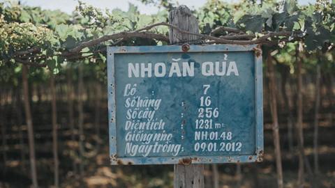 Có những góc thật tình trên mảnh đất Ninh Thuận nắng gió - Ảnh 15.