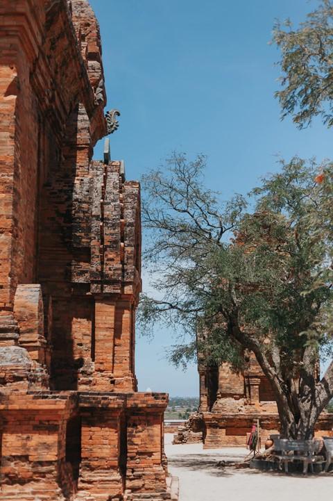 Có những góc thật tình trên mảnh đất Ninh Thuận nắng gió - Ảnh 18.
