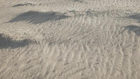 Có những góc thật tình trên mảnh đất Ninh Thuận nắng gió - Ảnh 10.