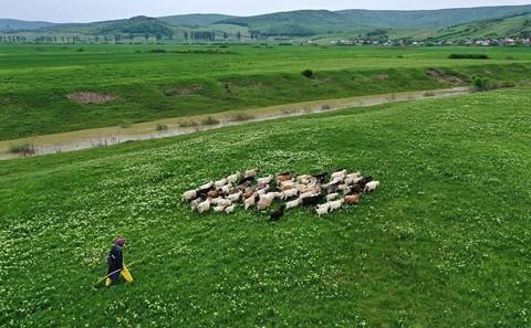 Vùng đất của bá tước ma cà rồng nhìn từ trên cao - Ảnh 17.