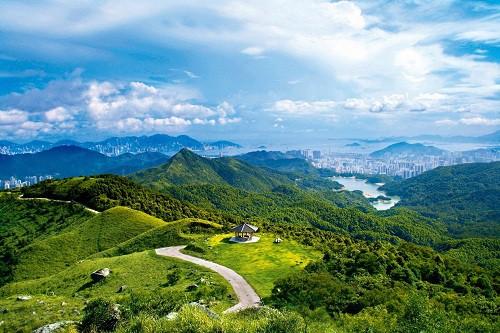 Những điều du khách nên làm và cần tránh khi đến Hong Kong - Ảnh 3.