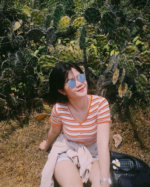 Lạc vào thước phim hoa vàng trên cỏ xanh tại Phú Yên - Ảnh 2.