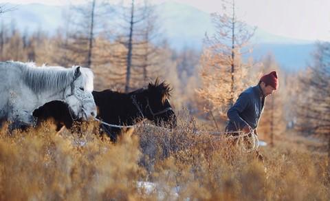 Cuộc sống dưới cánh đại bàng của người dân Mông Cổ - Ảnh 12.