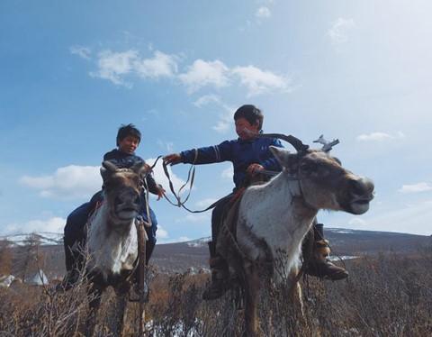 Cuộc sống dưới cánh đại bàng của người dân Mông Cổ - Ảnh 4.