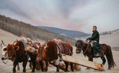 Cuộc sống dưới cánh đại bàng của người dân Mông Cổ - Ảnh 6.
