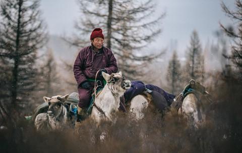 Cuộc sống dưới cánh đại bàng của người dân Mông Cổ - Ảnh 8.