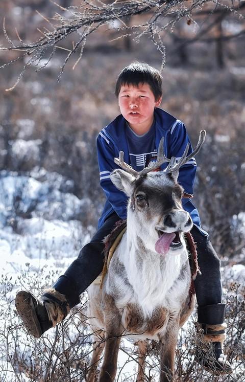 Cuộc sống dưới cánh đại bàng của người dân Mông Cổ - Ảnh 9.