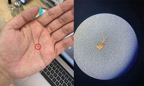 Chiêu lừa biến iPhone lock thành quốc tế bằng sim ghép siêu nhỏ - Ảnh 1.
