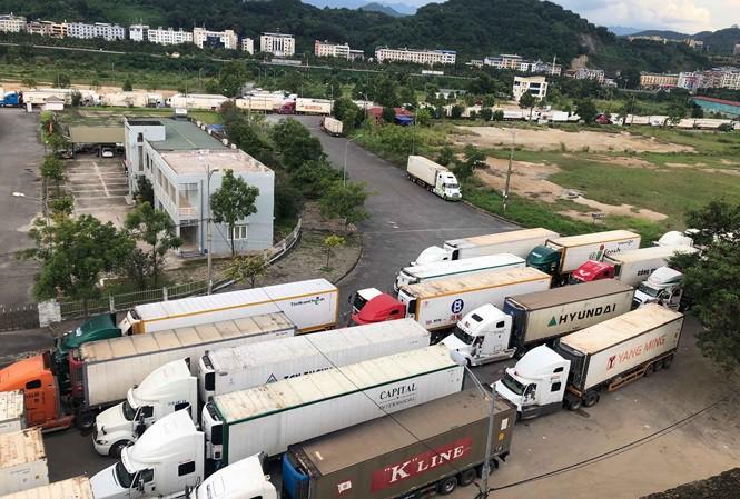 Hơn 500 xe container chở thanh long ùn ứ tại cửa khẩu khi làm thủ tục xuất hàng đi Trung Quốc - Ảnh: Tiền Phong