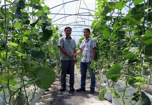 GIẢI THƯỞNG TÔN ĐỨC THẮNG NĂM 2019: Đam mê nông nghiệp sạch - Ảnh 1.