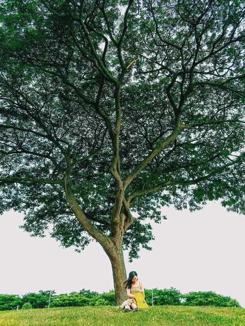 Từ mưa trong nhà đến nấc thang lên thiên đường, ra mà xem Singapore ngát xanh này! - Ảnh 17.