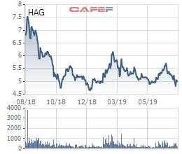 Chuyện tình tỉ đô giữa THACO – HAGL một năm nhìn lại - Ảnh 5.