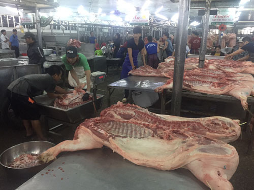 Giá thịt heo giảm, nhiều trại bán heo quá lứa - Ảnh 1.