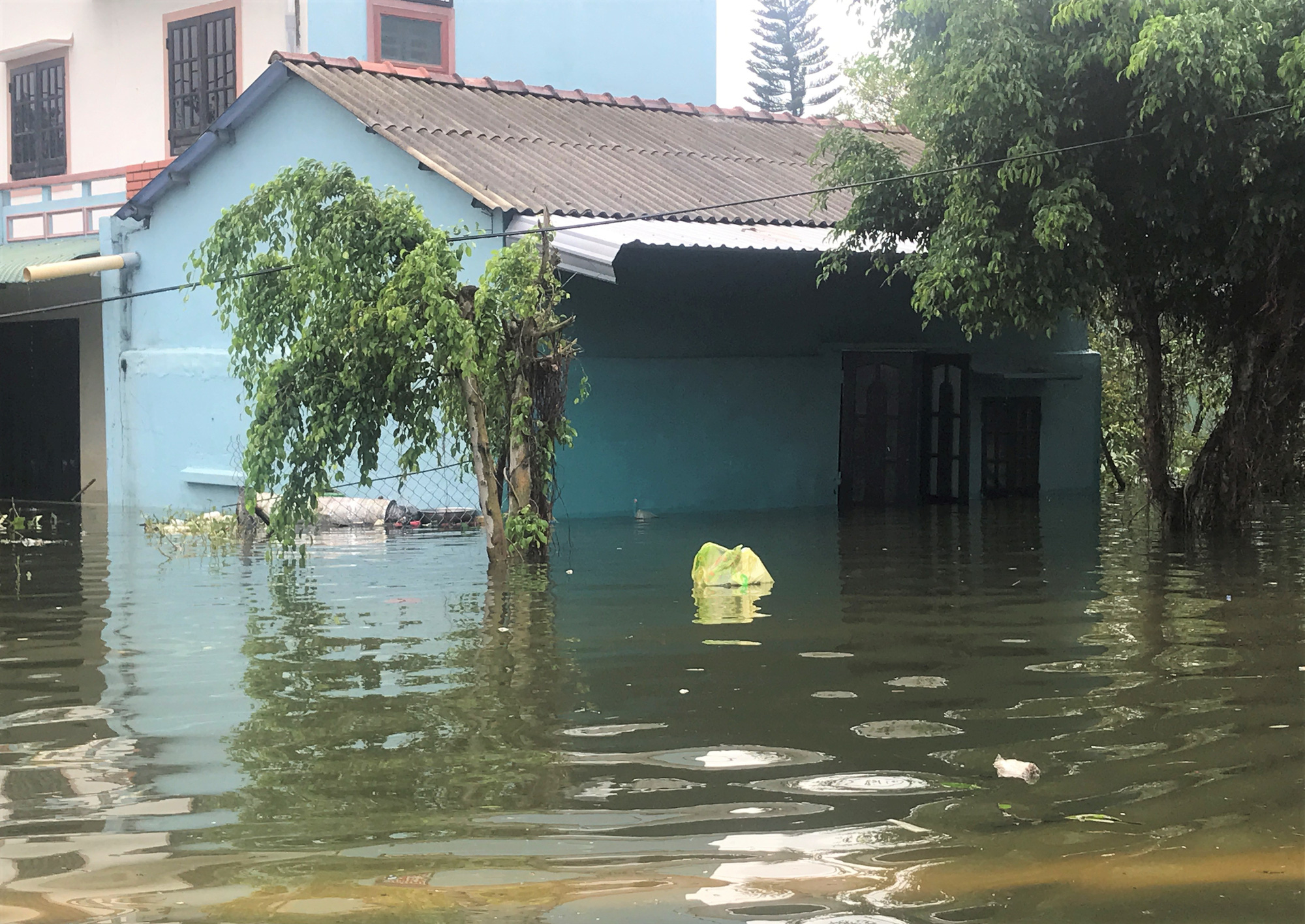 VIDEO: Lũ lụt biến khu nghỉ dưỡng 4 sao thành nơi đánh cá lý tưởng - Ảnh 4.