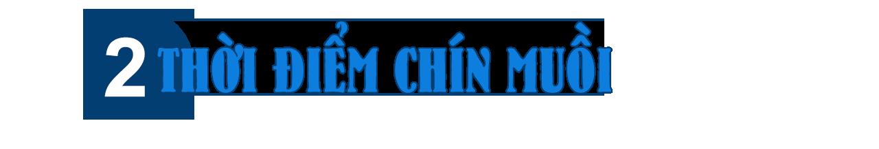 [eMagazine] Mong sớm có chính quyền đô thị TP HCM - Ảnh 7.