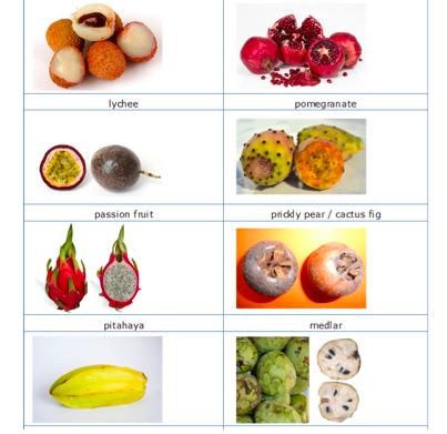 Doanh nghiệp Việt xuất khẩu trái cây đi châu Âu cần lưu ý gì? - Ảnh 1.