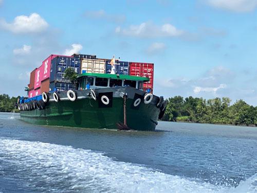 Thiếu container đóng hàng xuất khẩu - Ảnh 1.