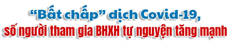 [eMagazine] BHXH tự nguyện: Nỗ lực về đích trước hạn - Ảnh 2.