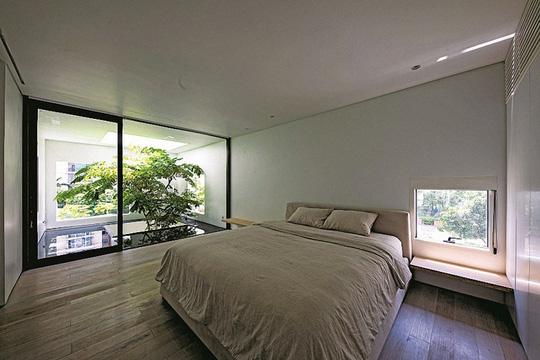 Ngôi nhà đẹp như bản tình ca với những ô vuông xanh ngẫu hứng - Ảnh 11.