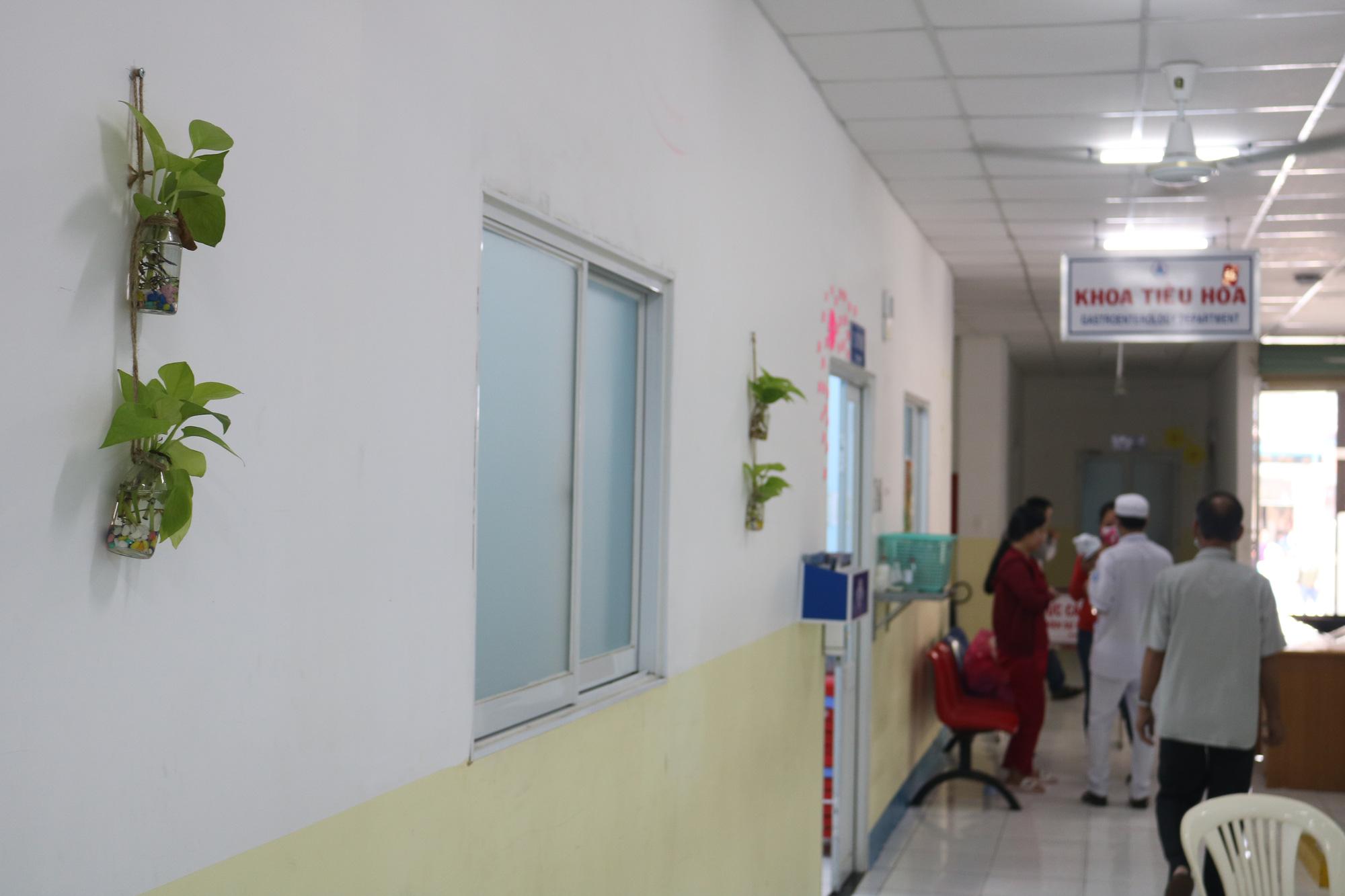 Nữ bác sĩ với khát vọng phủ xanh bệnh viện - Ảnh 1.