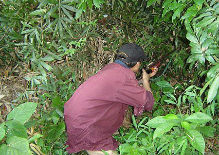 Thợ săn thú rừng chết thảm bên cây súng của mình - Ảnh 1.