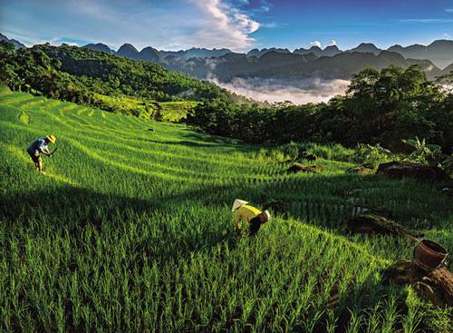 Thong dong xứ Thanh cùng Nguyễn Lương Hiệu - Ảnh 3.