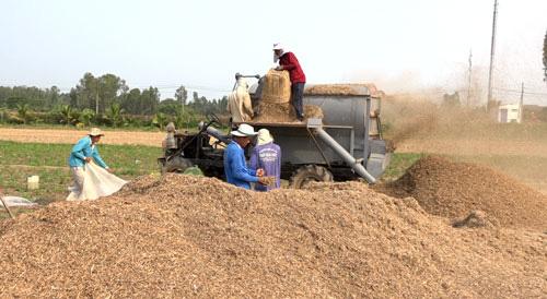 Giúp được nông dân là mừng - Ảnh 1.